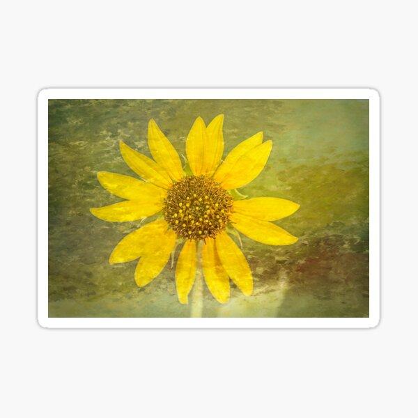 Desert Sunflower Sticker