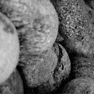 stone by Sebastian Kaiser