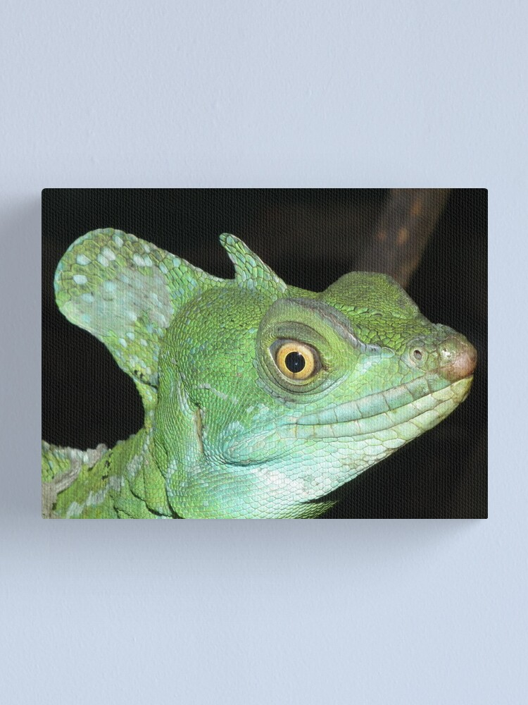 Alternate view of Green Basilisk Canvas Print