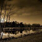 Dark Sunset by nataraki76