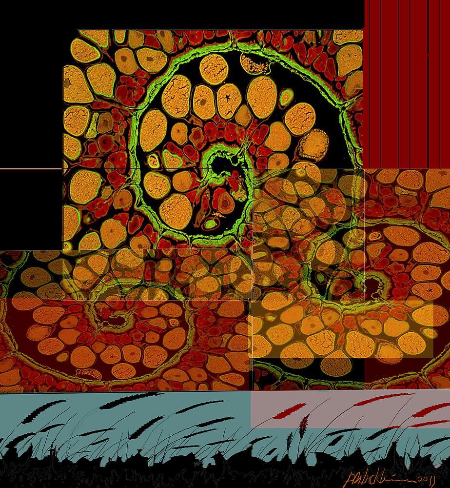 """Snail Trails"" by Patrice Baldwin"