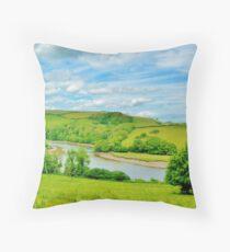 River Dart  Throw Pillow