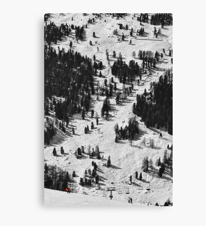 Red Scale Canvas Print
