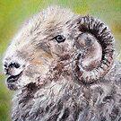herdwick sheep pastel by lalik