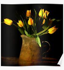 tulipes jaunes Poster