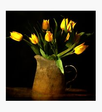 Lámina fotográfica tulipes jaunes