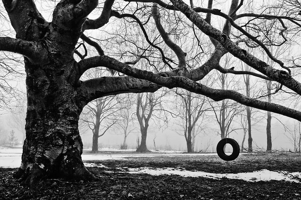 Old Backyard Tire Swing By Darren Langdon