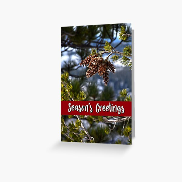 Western White Pine Holiday Card Greeting Card