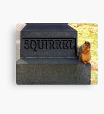 RIP Squirrel  Canvas Print