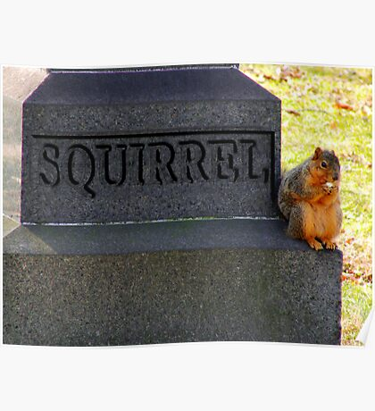 RIP Squirrel  Poster
