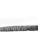 Loch Leven in March by Ellinor Advincula