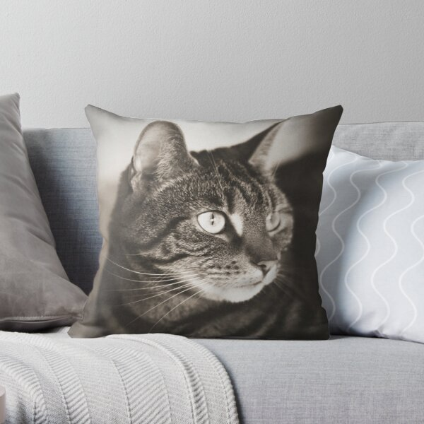 Vintage Tabby Cat Photography Throw Pillow