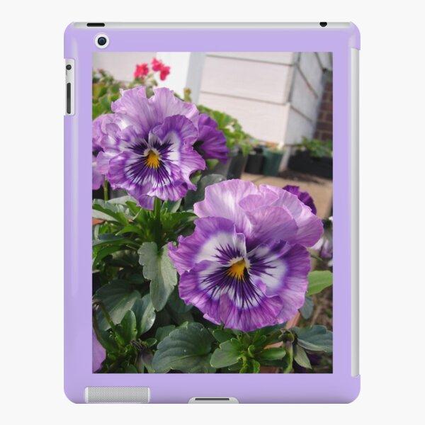 Beautiful Purple Pansies in the Garden iPad Snap Case