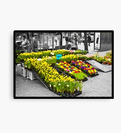 Daffodil Seller Canvas Print