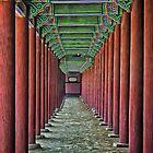 Courtyard Colonnade by TonyCrehan