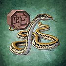 Year of the Snake by Stephanie Smith