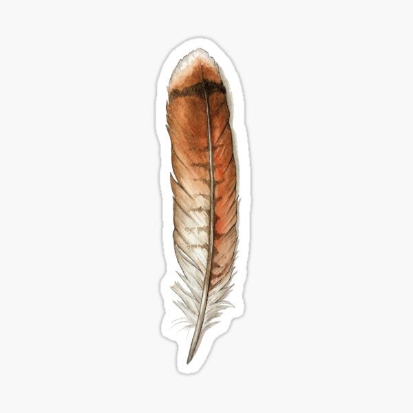 Red Tailed Hawk Feather Watercolor Sticker