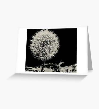 So Fluffy Greeting Card