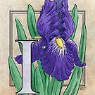 I is for Iris Flower Monogram Card by Stephanie Smith