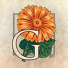 G is for Gerbera Flower Monogram by Stephanie Smith