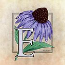 E is for Echinacea Flower Monogram by Stephanie Smith