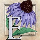 E is for Echinacea Flower Monogram Card by Stephanie Smith