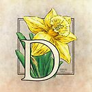 D is for Daffodil Flower Monogram by Stephanie Smith
