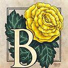 B is for Begonia Flower Monogram Card by Stephanie Smith