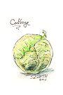 Cabbage by Stephanie Smith