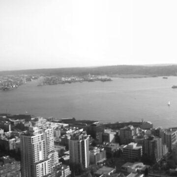 Seattle Panorama (B&W) by EliminatorZigma