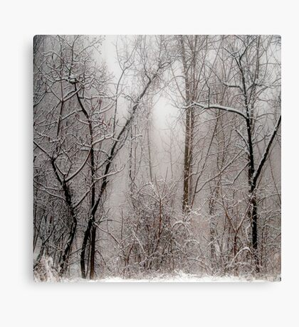 March Snow Canvas Print