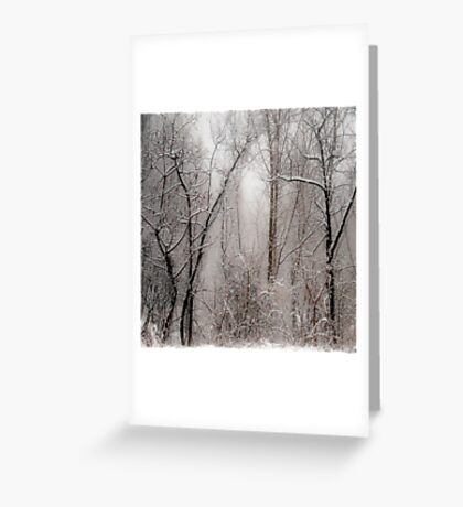 March Snow Greeting Card