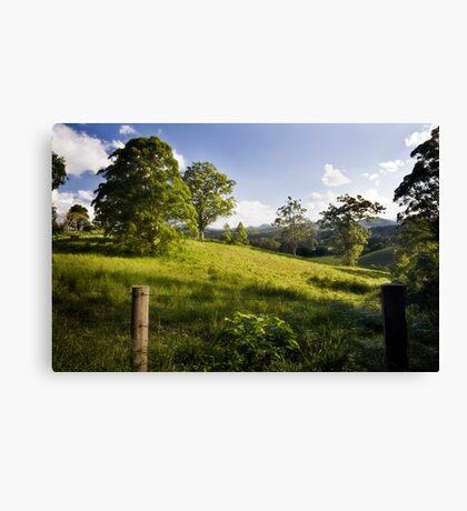 Rolling hills of Bellingen Canvas Print