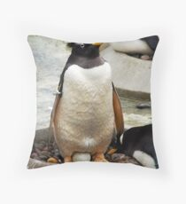 The First Throw Pillow