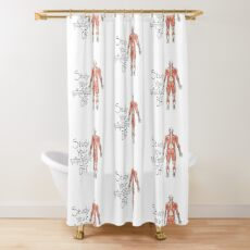 Study your Gluteus Maximus Off  Shower Curtain