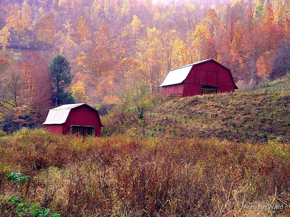 Twin Tobacco Barns by Annlynn Ward
