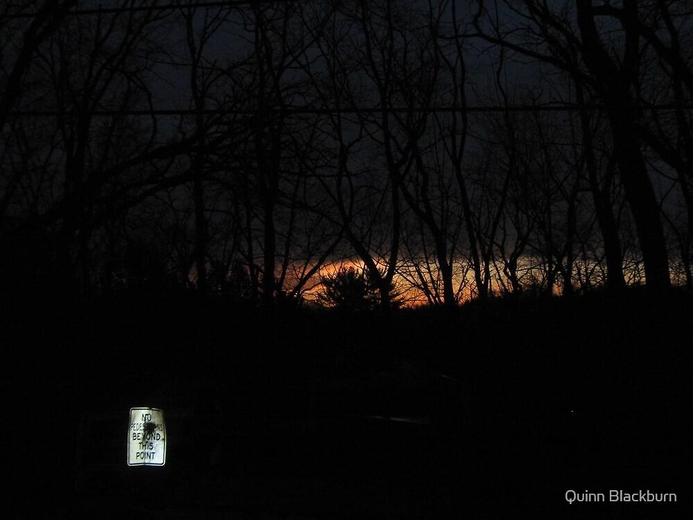 Quartet in Moonlight: Trickster's Riff by Quinn Blackburn