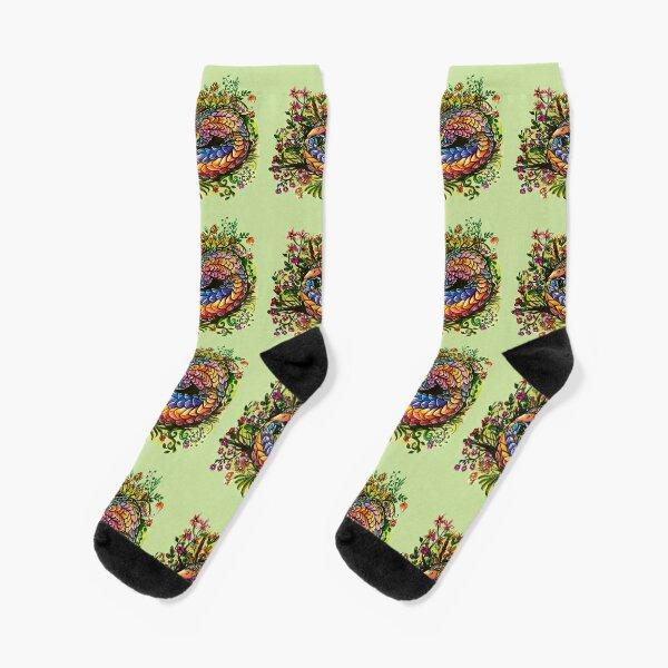 Rainbow Pangolin Socks