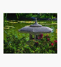 Sunny afternoon in the Japanese garden Photographic Print