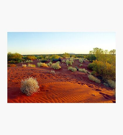Red sands of the outback , Australia Photographic Print