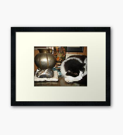 DOTTIE AND THE STONE CAT Framed Print