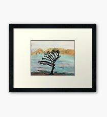 Very Wind Blown Torry Pine, watercolor Framed Print