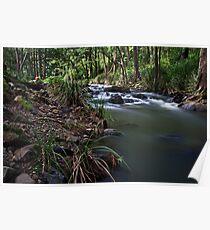 Condamine River Poster
