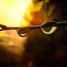 Silence is Golden by vigor