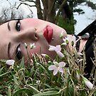 Daydream I by Kristin Sparks