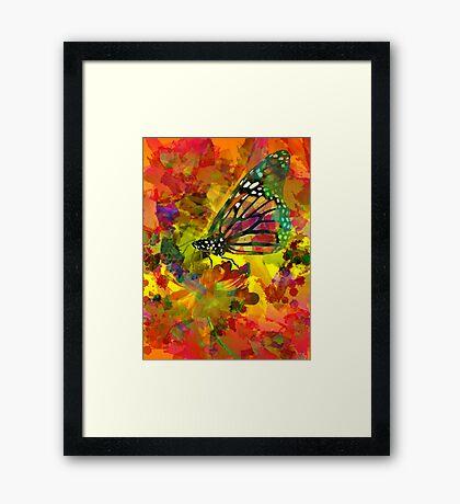 Garden of Colours Framed Print