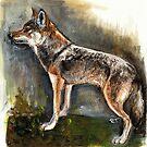 «Eastern Wolf Watercolor» de belettelepink