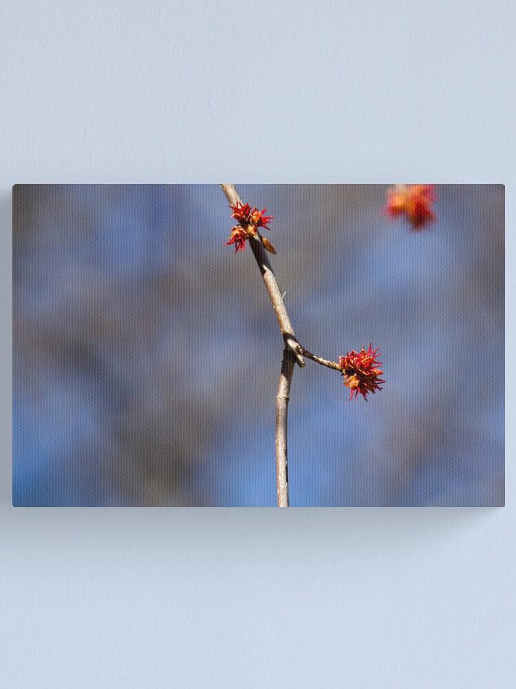 Alternate view of Illusive Spring Canvas Print