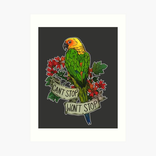 Can't Stop; Won't Stop (jenday conure) Art Print