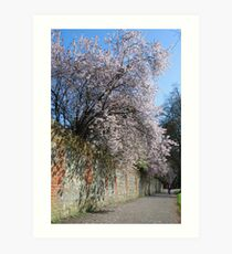 Farnham in Springtime No3 Art Print